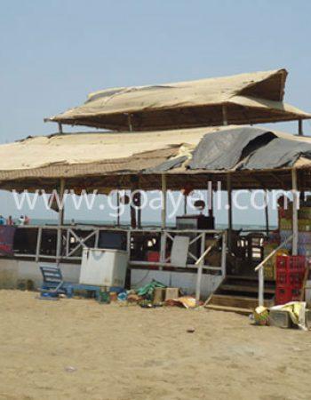 Morjim Beach ,Goa
