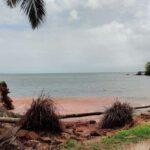 hollant-beach-wall-5